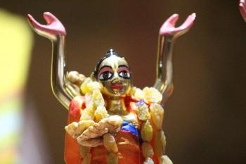 Gaur Purnima Celebration 9th March 2020